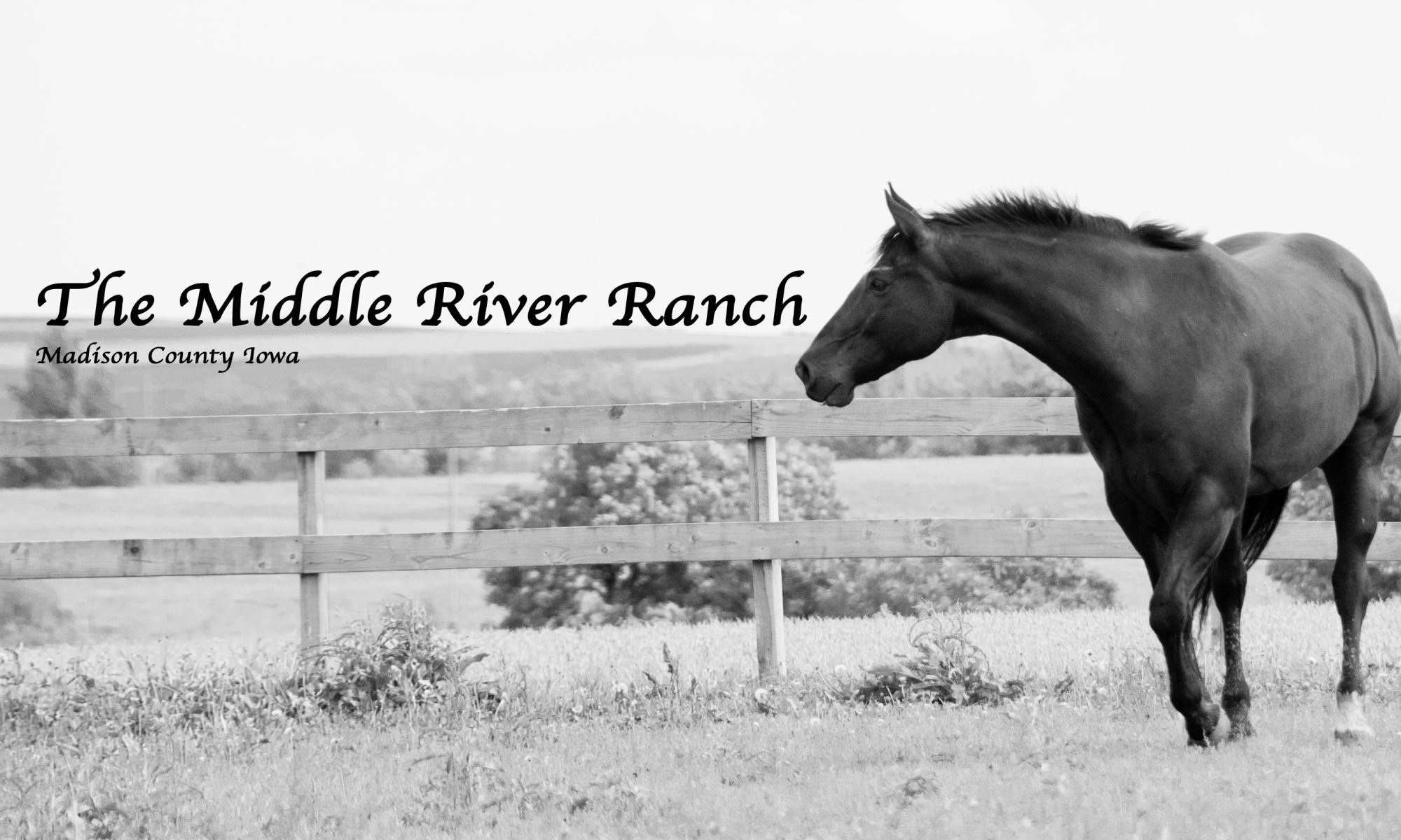 The Middle River Ranch